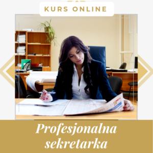 Profesjonalna sekretarka